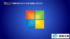 雨林木风Windows11 万能装机版64位 2021.09